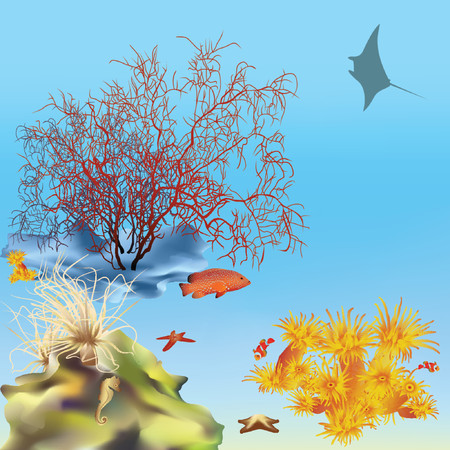 butterflyfish: Coral reef with manta. Vector. Mesh.