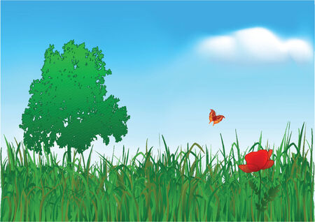 The flying butterfly on a meadow at a lonely poppy. Vector