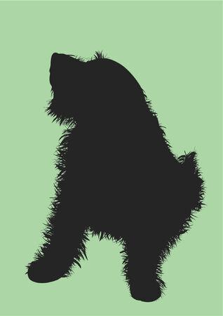 devanear: Sitting dog. A vector, a portrayal of a hair Ilustração