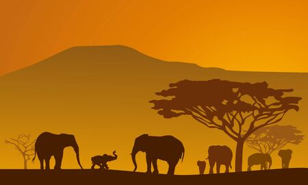 Silhouettes of elephants on backgrounds Kilimanjaro