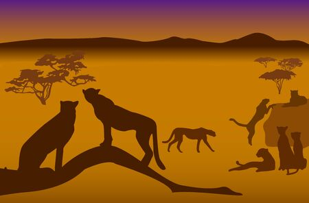 Silhouettes of cheetahs in savanna Stock Vector - 1631727