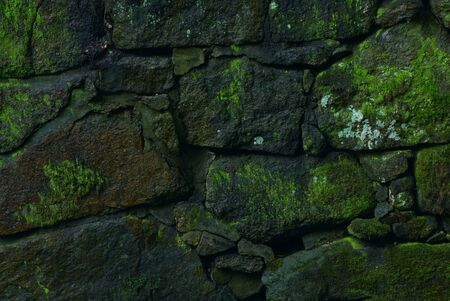 The old stone wall covered by a moss. Stock Photo