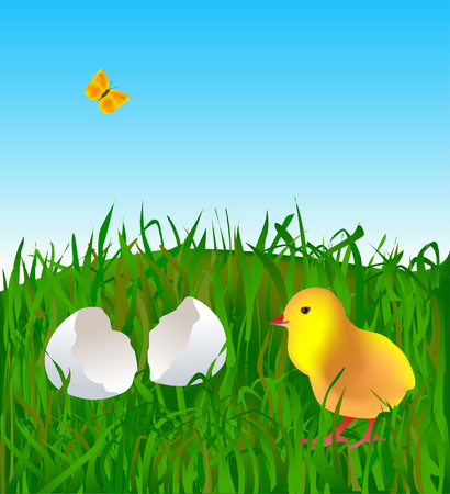 Little easter chick on the grass Stock Vector - 2707104