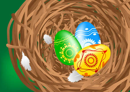 Easter colorful eggs in a nest. Vector