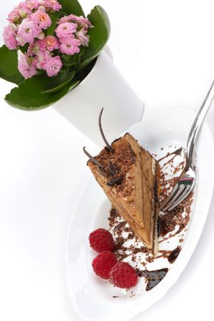 Nut cake with chocolate and a raspberry photo