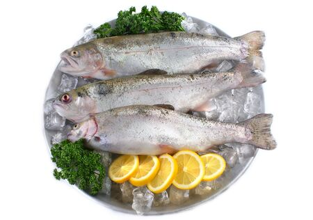 Three fresh trout on plate with ice on white background
