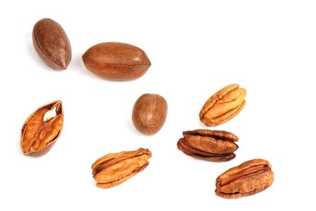 pekan: Collection of pecan nuts in a shell and without it on a white background