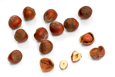 Hazelnuts  on a white background Stock Photo - 3978162