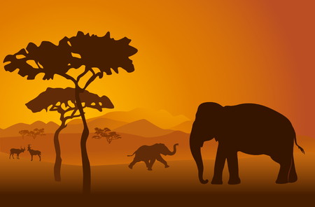crater: Silhouettes of elephants on backgrounds Kilimanjaro