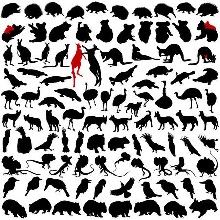 Honderd silhouetten van wilde zeldzame dieren uit Australië, Tanzania en Nieuw-Zeeland