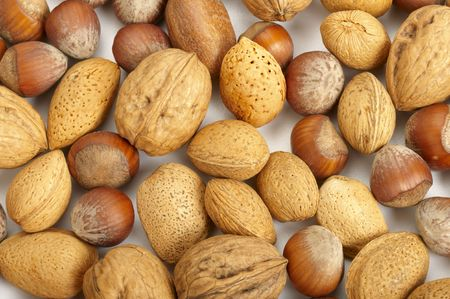 pekan: Collection of pecan nuts, hazelnuts and walnuts