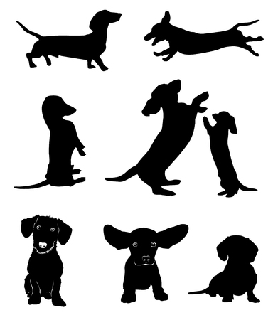 Silhouettes of dachshunds vector illustration.  イラスト・ベクター素材