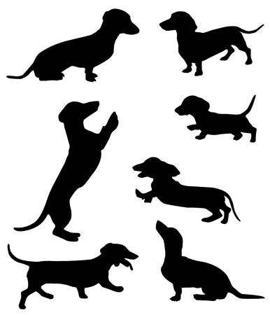 Silhouettes of dachshunds vector illustration. Illustration