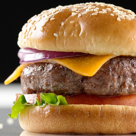 burger on bun: cheeseburger macro