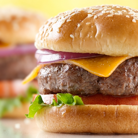 cheeseburger macro Stock Photo - 12925186
