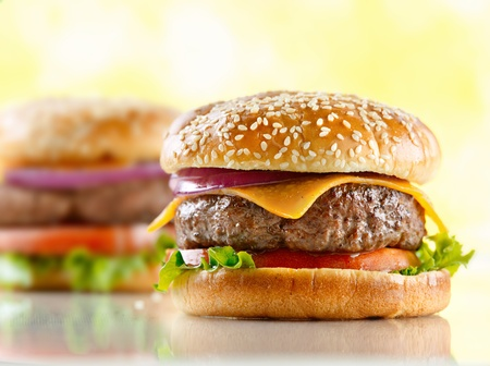 cheeseburger Stock Photo - 12925193
