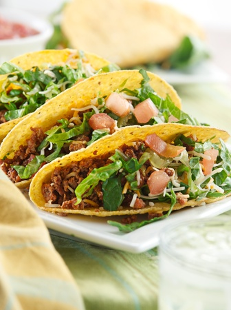 closeup taco meal photo