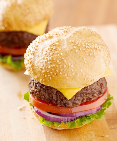 two cheeseburgers in natural light. photo