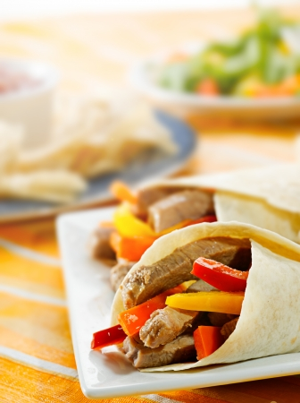 fajitas Stock Photo - 21957870