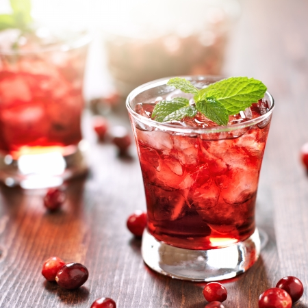 cranberry cocktail with mint garnish. photo