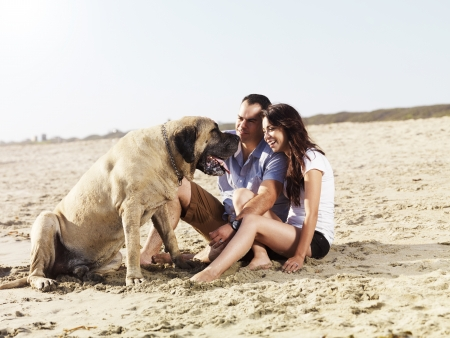 couple on the beach playing with pet dog.