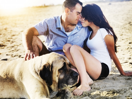 romantic couple with pet dog on the beach  photo