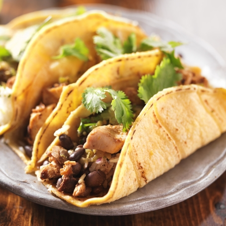 close up food: authentic mexican tacos in yellow corn shell with chicken