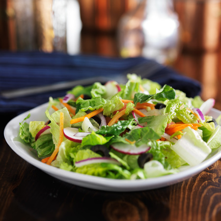garden salad with romaine lettuce and other vegetables Imagens