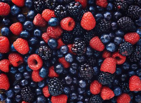 blueberies, 라스베리와 검은 딸기는 총 위에서 아래로