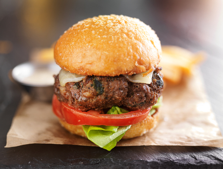 gourmet burger: tasty gourmet burger with french fries and sauce Stock Photo