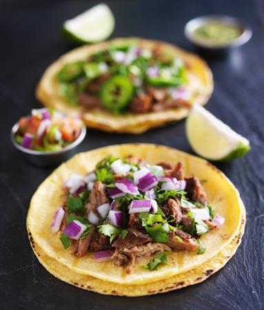 Authentieke Mexicaanse taco's met carnitas en barbacoa Stockfoto - 38029180