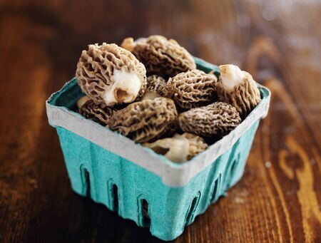freshly picked: freshly picked morel mushrooms in basket Stock Photo