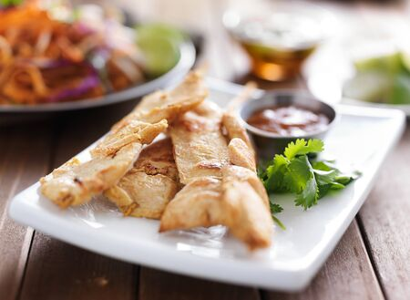 chicken satay: chicken satay on plate with peanut sauce Stock Photo