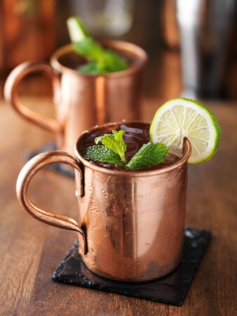 mule: iced cold moscow mule with mint and lime