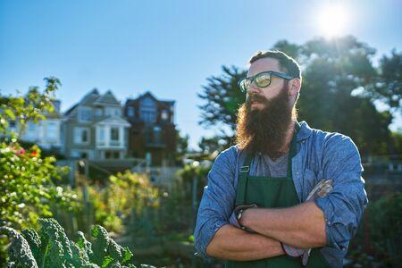 millennial: proud gardener with beard looking at his crops in urban communal garden Stock Photo