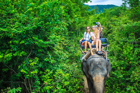 group of tourists in thailand riding elephants through jungle