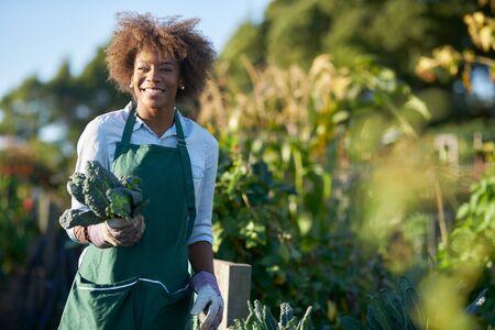 African american woman holding freshly picked kale from communal community garden posing for portrait Standard-Bild
