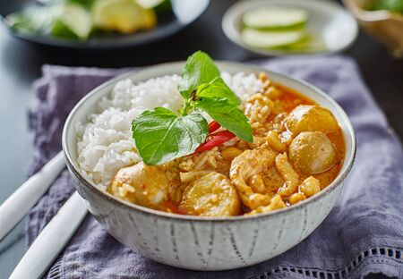 thai massaman chicken curry in bowl with jasmine rice Imagens