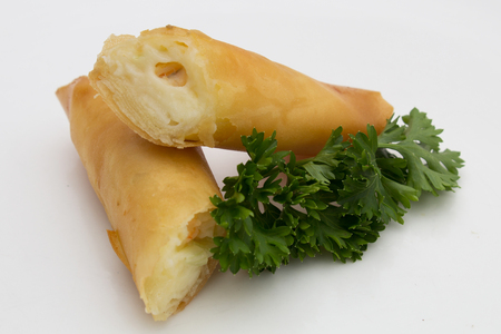 Isolated Fried Cheese Spring Rolls in white plate. Harumaki in a plate. Reklamní fotografie