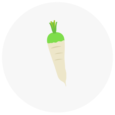 turnip: White turnip icon in trendy flat style isolated on color background.