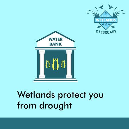 세계 습지의 날 만화 디자인 일러스트, 소셜 미디어에 사용하기위한 캠페인 자산 스톡 콘텐츠 - 69182095
