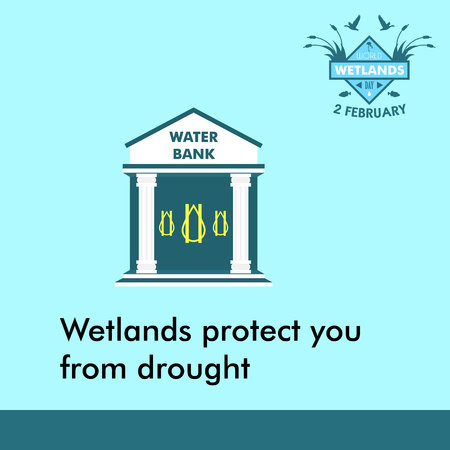 World wetlands day cartoon design illustration, campaign asset for use on social media Stock fotó - 69182095