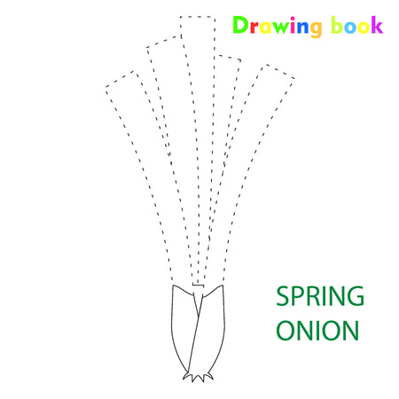 Spring onion coloring and drawing book vegetable design illustration Stock Illustratie
