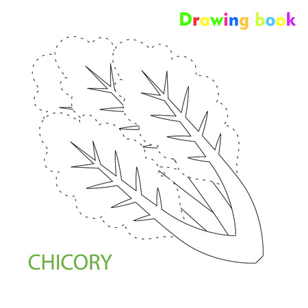 Chicory coloring and drawing book vegetable design illustration Ilustracja