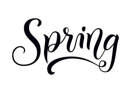Modern calligraphy lettering of Spring in black on white isolated for decoration, sticker, poster, banner, advertising, calendar