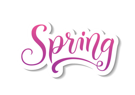 Modern calligraphy lettering of Spring in pink and purple with white outline and shadow in paper cut style on white background for decoration, sticker, poster, banner, advertising, calendar