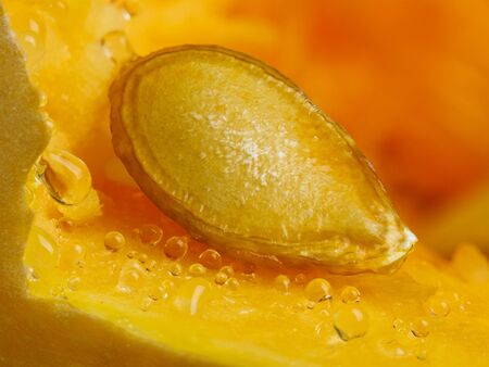 Pumpkin seed with juice drops