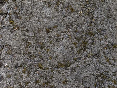 Texture of the cement wall. Texture cracked, rough. Texture of old plaster with lichen.