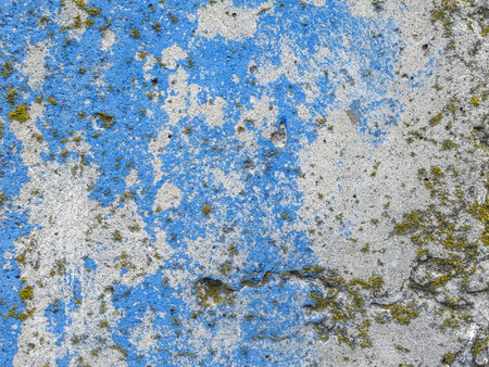 Texture of the cement wall. Texture with blue and white paint, scratches, part of the texture with lichen.