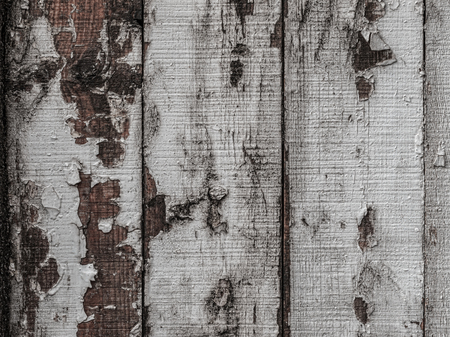 Texture of natural wood planks with cracked white paint, abstract background.